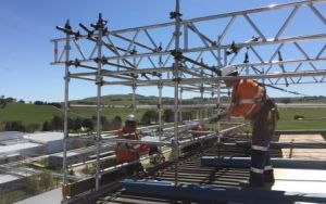 roof scaff SMALL